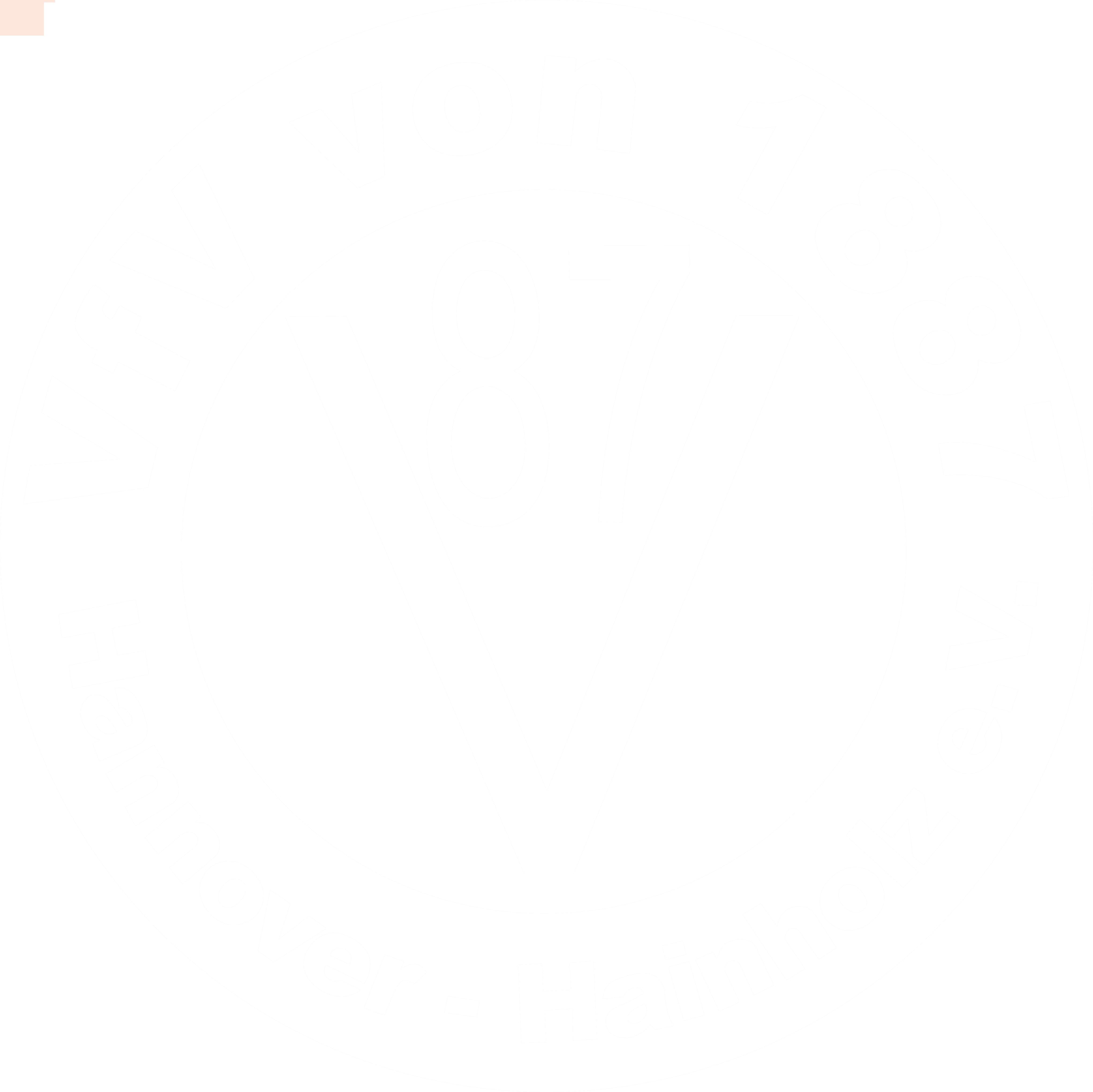 VfV Hainholz